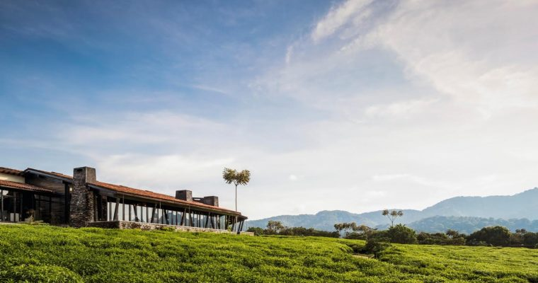 ONE&ONLY NYUNGWE HOUSE TO OPEN IN RWANDA THIS OCTOBER